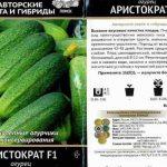 Огурец Аристократ F1: описание сорта