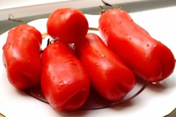 Описание сорта томата Аурия, особенности выращивания и урожайность