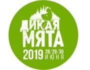 Дикая-мята-2019