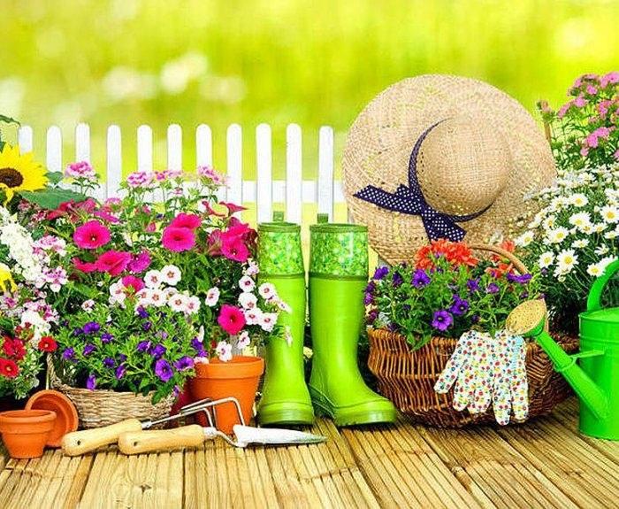 Лунный календарь цветовода на июль 2019 года: благоприятные дни