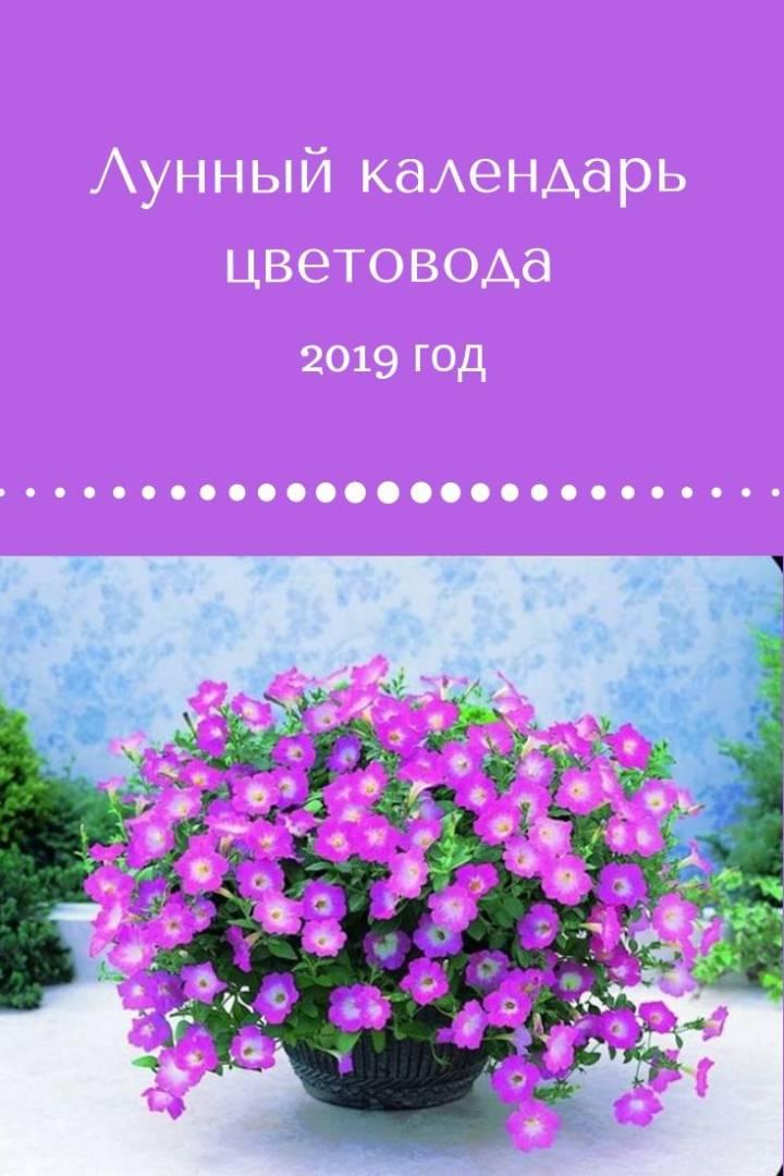лунный-календарь-цветовода-2019