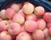 Сорта розовых яблок