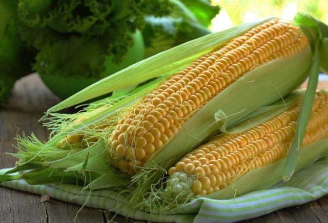посадка кукурузы,.