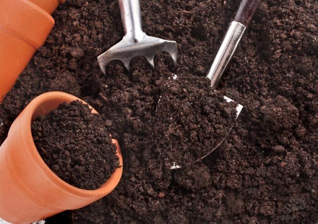 Как подготовить почву для посадки рассады перцев