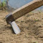 Как подготовить почву для посадки чеснока (весной, осенью)