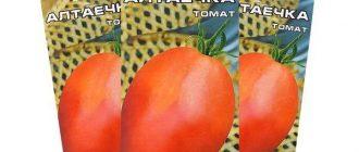 Томат Алтаечка: описание сорта, характеристики, фото
