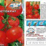 Томат Аристократ F1: описание сорта, характеристики, фото