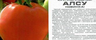 Томата Алсу: описание сорта, выращивание, фото