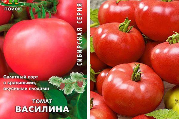 Томат Василина: описание сорта