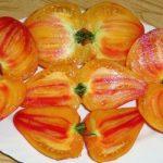 Томат Бизон оранжевый:описание сорта