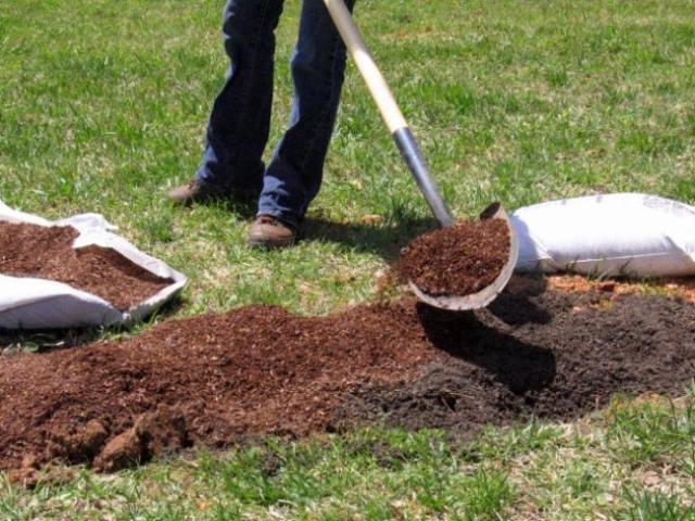 малина-почва.