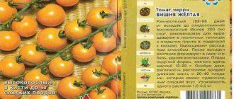 Томат Черри Вишня Желтая: описание сорта