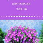 Лунный календарь цветовода на август 2019 года: комнатные растения и цветы