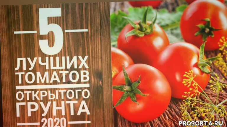 сорта томатов, рассада, рецепт, гигантские томаты, крупные томаты, урожайный огород, урожайные томаты, сад