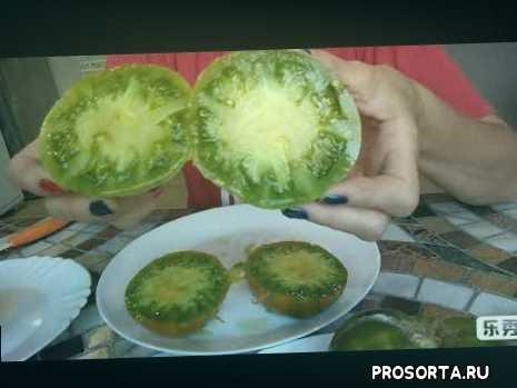 Томаты Болото и Малахитовая шкатулка. Зеленоплодные томаты, отличия.