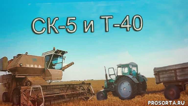 комбайн нива ск-5, уборка урожая комбайнами, уборка урожая 2020, уборка урожая видео, трактор т-40, нива ск-5, озимый ячмень, комбаин ск-5