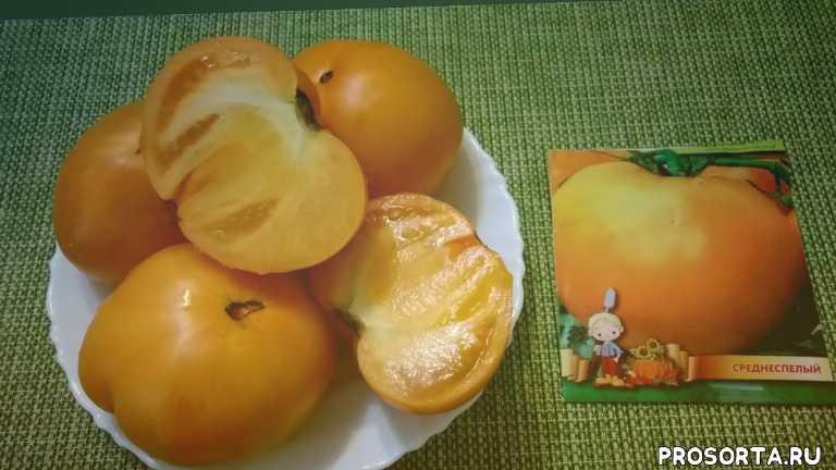 томат хурма отзывы, томат хурма характеристики, сад и огород, томат хурма семена, описание сорта, вкусные сорта томатов, лучшие сорта томатов, урожайные сорта томатов