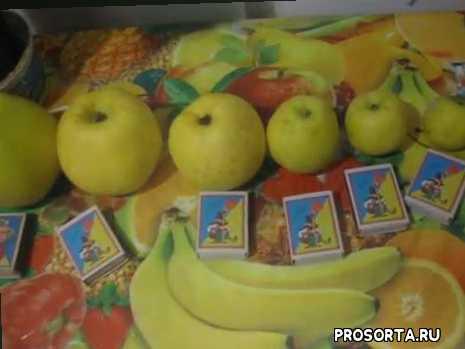 """Яблочная мичуринская """" матрешка """""""