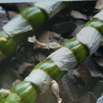 ⚠ Размножаем орхидею Дендробиум нобиле / Dendrobium nobile черенками. Самый простой способ.