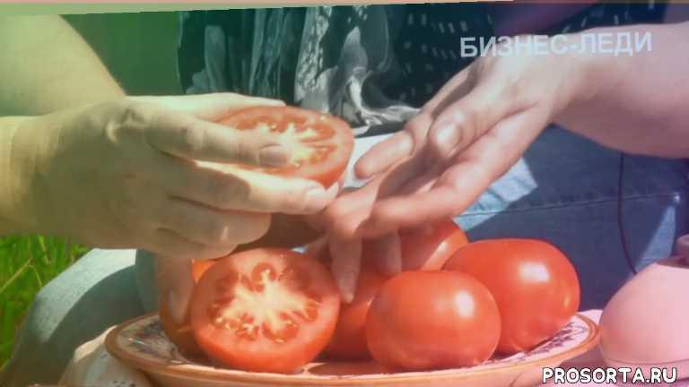 """Знакомство с томатом сорта """"Бизнес-леди"""""""