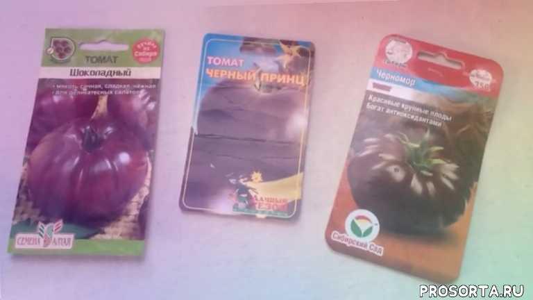 огородникам, овощи, томаты, мои сорта томатов, обзор томатов, черноплодные томаты, сеена томатов, сорта томатов