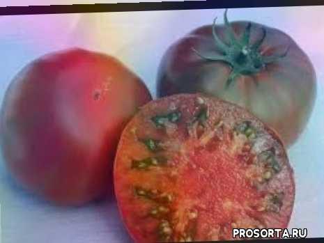 самые_вкусные_сорта_томатов, сорта_томатов, томаты_фрукты, биф_томаты