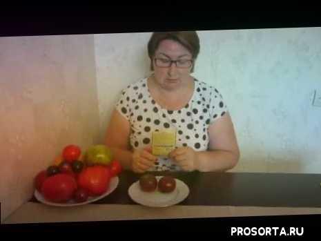 лечебные томаты, коричневый томат, томат с афродизиаком, томат с антоцианом, томат виагра, обзор томатов