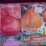 ТОМАТЫ, которые НЕ ПОДВЕЛИ в 2020 г. Сорта томатов.ТопСАд.