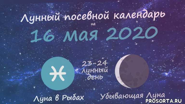16 мая 2020, лунный посевной календарь май 2020, календарь огородника май 2020, календарь садовода май 2020