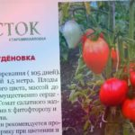 Томат БУДЁНОВКА свои семена продажа ДНР