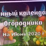Посевной Календарь ? Лунный Календарь Огородника На ИЮНЬ 2020. Что и Когда сажать Благоприятные дни