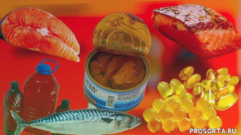 рыбий жир, рыба, красная рыба, омега 3, полезные продукты, самые полезные продукты