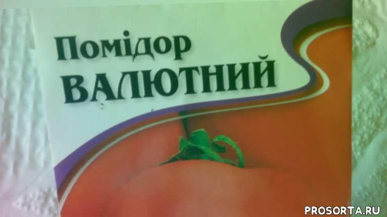 посев, обзор, валютный, аэлита, семена, помидор, томат