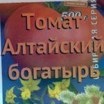 Томат обыкновенный Алтайский богатырь ? обзор: как сажать, семена томата Алтайский богатырь