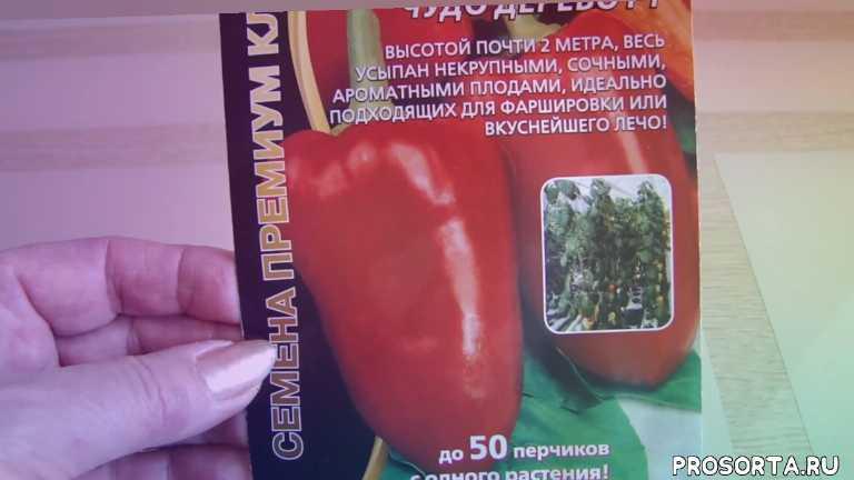 супер урожай перца, раннеспелый перец, перец - дерево