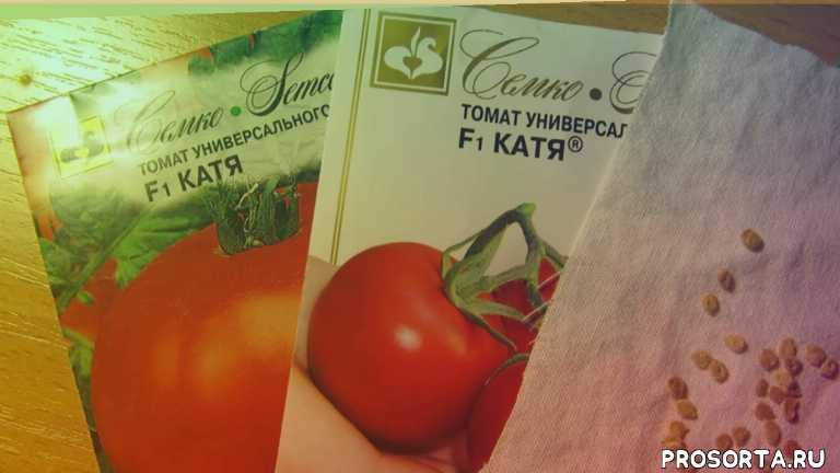 март, посев, томаты