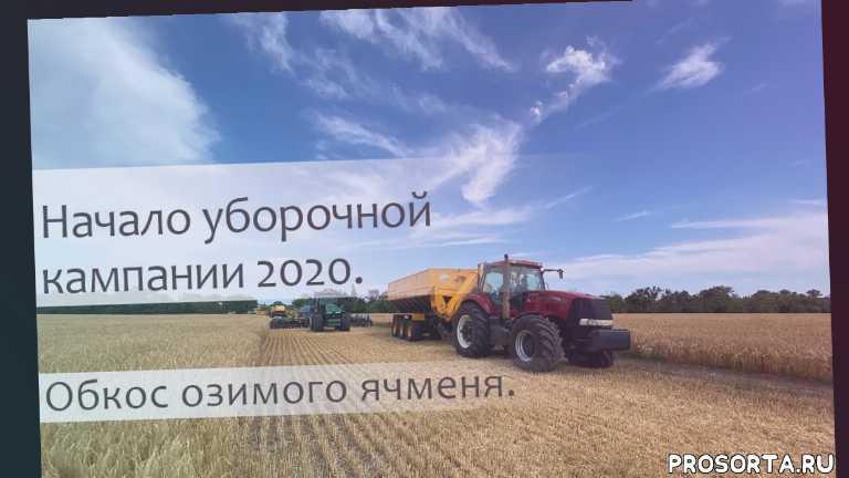 обкос поля, украина, урожай2020, озимый ячмень, урожай, #уборка
