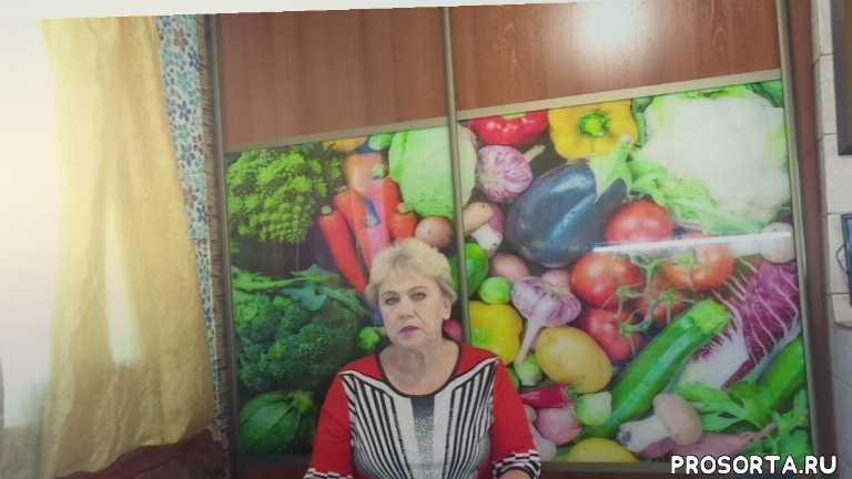 сеять томаты в сибири., когда сеять в сибири, даты посева томатов, посевная 2019, томаты, огородная азбука, ольга чернова
