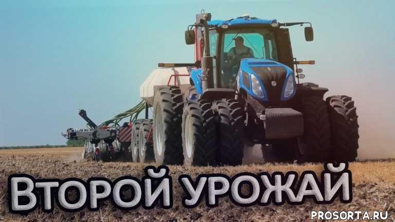 стриптил, прямой посев, посевной комплекс, new holland, второй урожай, посевная сои, sts magia, фермер
