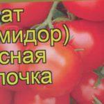 Томат сортовой Красная Шапочка. Краткий обзор, описание характеристик Krasnaya Shapochka