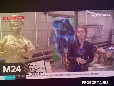 москвичи, люди, новости, последние новости, москва 24, новости столицы, московские новости, алина гилева