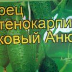 Огурец Анюта (Огурец). Краткий обзор, описание характеристик, где купить семена cucumis sativus