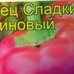 Перец сладкий Рубиновый. Краткий обзор, описание характеристик, где купить семена cápsicum ánnuum