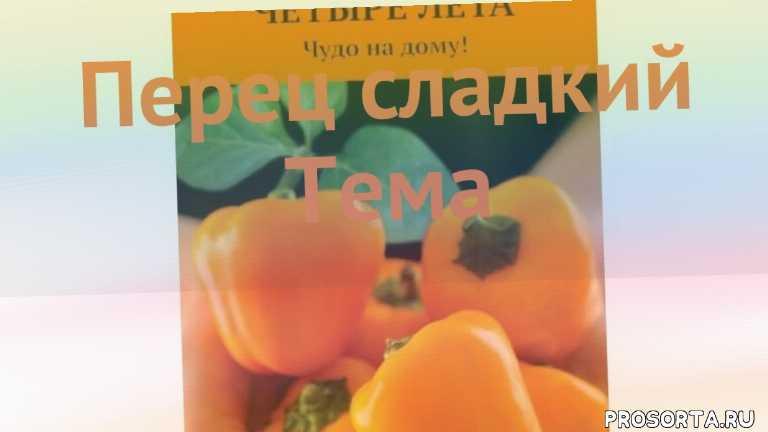 тема семена, семена, семена перца, семена перца тема, перец сладкий тема как сажать, перец сладкий тема обзор как сажать, перец сладкий тема обзор, перец тема обзор как сажать
