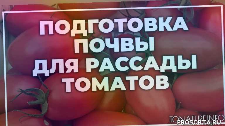 земля длятоматы, почва для томаты, томаты полив, томаты вредители, томаты болезни, томаты удобрение, томаты подкормка, томаты пересадка