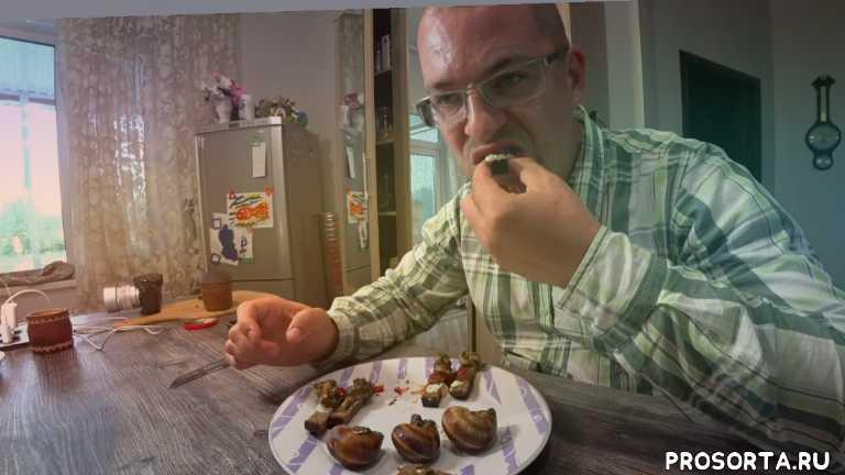 анапа, гостагаевская, рецепт приготовления улиток, блюдо из улиток, едим улиток, улитка по бургундски, рецепт улитка, виноградная улитка
