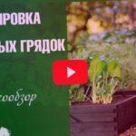 Соседство овощей в огороде ➡ Планирование грядок