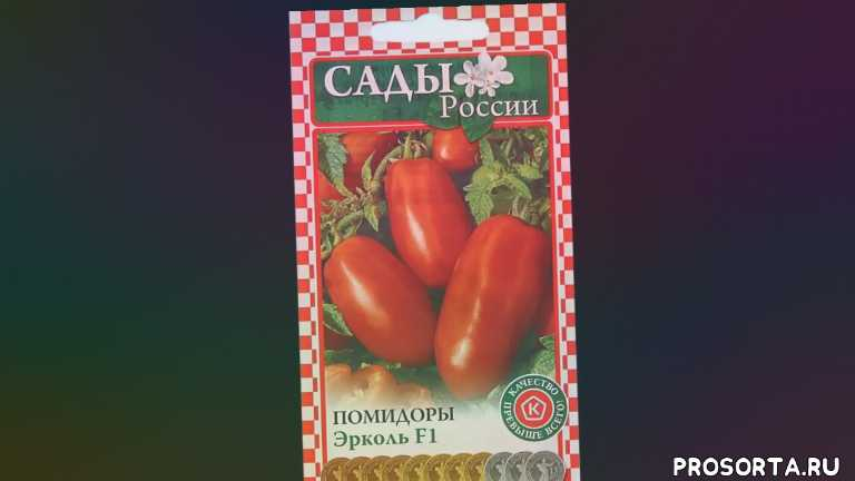 професиональная серия, новые семена, вкусные помидоры, гибрид сливки, новинка томатов