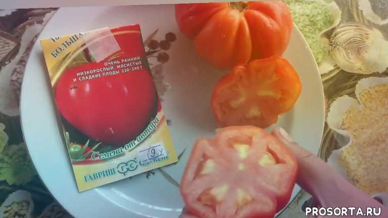 большая мамочка, помидоры, томаты