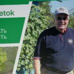 ВИНОГРАД: как выбрать и посадить саженцы винограда осенью